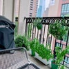 1 br - No Fee | Private Balcony in Chelsea Main Photo