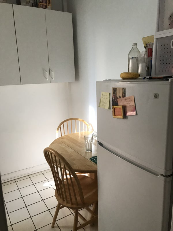 august sublet with option to renew lease room to rent from spareroom