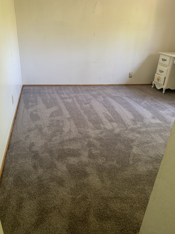 Photo 1: Brand New Carpet (never Tennant occupied)